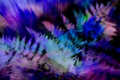 exploding ferns with purple Royalty Free Stock Images