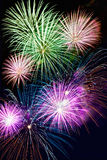 Exploding Firework Display Royalty Free Stock Image