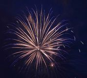Exploding Firework Stock Images
