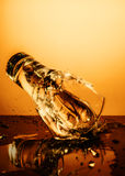 Exploding Glass cup with water shattering over orange background. Stock Photos