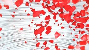 Exploding red heart on white background. 4k