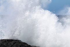 Exploding Wave, Fuerteventura. Wave exploding towards the camera at the northern coast of Jandia in Fuerteventura, Spain Stock Image