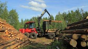 Exploitant het Stapelen omhoog registreert met KOMATSU 830 3 bosbouwforwarder stock foto