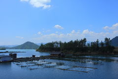 Exploitation de pisciculture photos stock