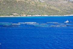 Exploitation de pisciculture 2 Images libres de droits