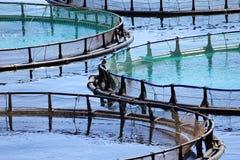 Exploitation de pisciculture Photo libre de droits