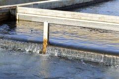 Exploitation de pisciculture Photographie stock