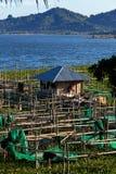 Exploitation de pisciculture au lac Tondano Photos libres de droits
