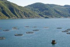 Exploitation de pisciculture dans le lac de barrage d'Altinkaya. La Turquie image stock