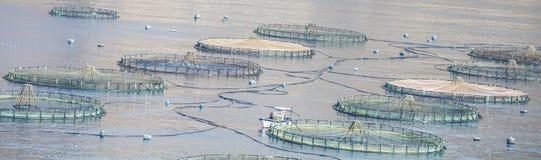 Exploitation de pisciculture dans Roquetas De mars, AlmerÃa, Espagne Photos libres de droits