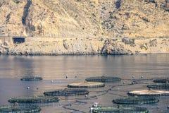 Exploitation de pisciculture dans Roquetas De mars, AlmerÃa, Espagne Photos stock