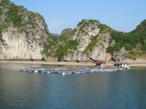 Exploitation de pisciculture en mer Image libre de droits