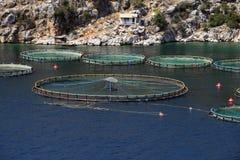 Exploitation de pisciculture, Grèce Images stock