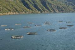 Exploitation de pisciculture. La Turquie-Samsun Images libres de droits