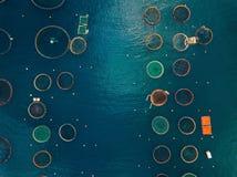 Exploitation de pisciculture saumoné avec les cages de flottement Silhouette d'homme se recroquevillant d'affaires images stock