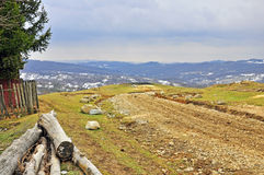 Exploitation du bois Photos libres de droits