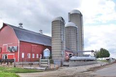 Exploitation laitière avec trois silos Photographie stock libre de droits