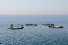 Exploitations de pisciculture Photo libre de droits