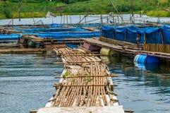 Exploitations de pisciculture avec le filet bleu Photos stock