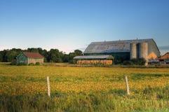 Exploração agrícola Foto de Stock Royalty Free
