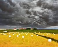 A exploração agrícola Fotografia de Stock Royalty Free