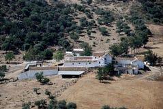 Exploração agrícola agricultural, a Andaluzia, Spain. Fotografia de Stock