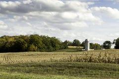 Exploração agrícola americana no campo do milho Fotos de Stock Royalty Free