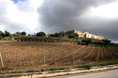 Exploração agrícola antiga da fortaleza. Cultivo dos vinhedos. Campos & árvores fotografia de stock royalty free