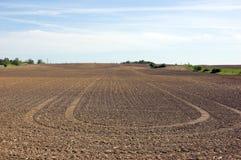 Exploração agrícola da agricultura fotografia de stock royalty free