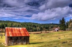 Exploração agrícola da herança Foto de Stock