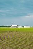 Exploração agrícola da mola Fotografia de Stock Royalty Free