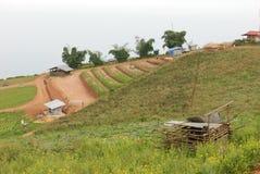 Exploração agrícola da montanha Foto de Stock