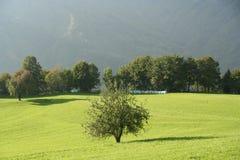Exploração agrícola da montanha da ecologia imagens de stock royalty free