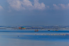 Exploração agrícola da ostra com casa e barco da exploração agrícola Fotografia de Stock Royalty Free