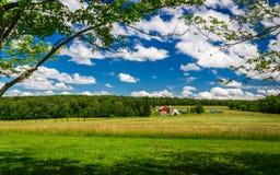 Exploração agrícola da primavera Fotos de Stock
