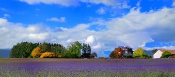 Exploração agrícola da queda Foto de Stock Royalty Free