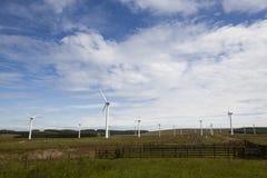 Exploração agrícola da turbina de vento. Imagem de Stock