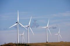 Exploração agrícola das turbinas eólicas imagem de stock royalty free