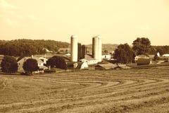Exploração agrícola de Amish Imagens de Stock Royalty Free