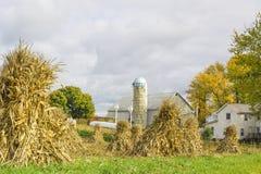 Exploração agrícola de Amish Foto de Stock