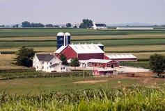 Exploração agrícola de Amish em Sunny Day imagens de stock
