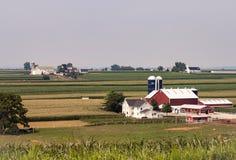 Exploração agrícola de Amish em Sunny Day 2 foto de stock
