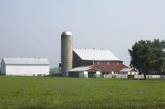 Exploração agrícola de Amish em uma manhã obscura foto de stock