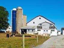 Exploração agrícola de Amish, Lancaster EUA imagem de stock