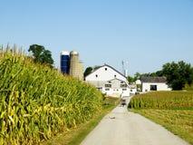 Exploração agrícola de Amish, Lancaster EUA fotos de stock