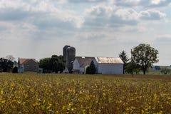 Exploração agrícola de Amish no Condado de Lancaster imagens de stock royalty free