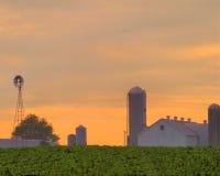 Exploração agrícola de Amish no nascer do sol foto de stock