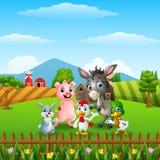 Exploração agrícola de animais nos montes Imagem de Stock Royalty Free