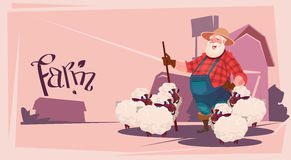 Exploração agrícola de Breeding Sheep Wool do fazendeiro ilustração stock