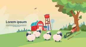 Exploração agrícola de Breeding Sheep Wool do pastor do fazendeiro ilustração stock